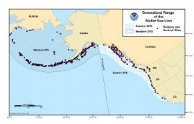 A map of the range of Steller sea lions in the North Pacific.