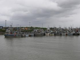 Driftnet vessels in the Dillingham Harbor before the recent push of sockeye allowed liberalized fishing time in the Nushagak District.