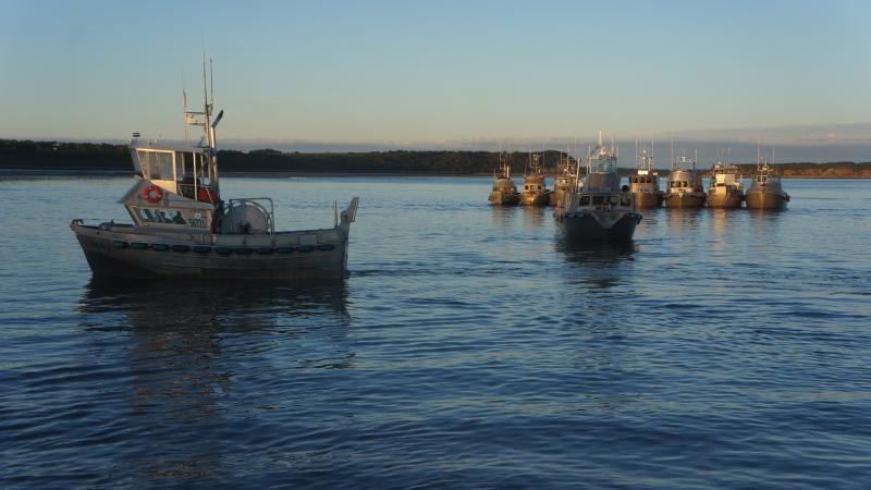 Bristol Bay drift boats during the 2013 season