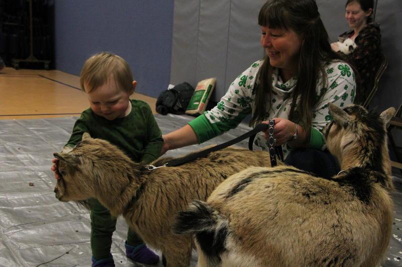 Deanna Baier's pet goats were a big hit.