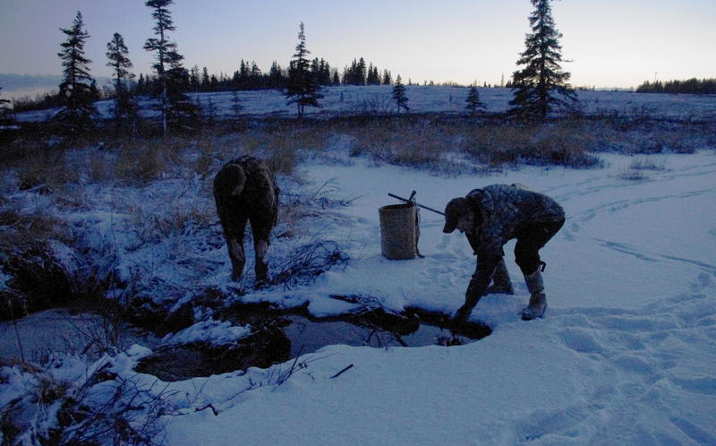 Joe Stalmaster and Andy Aderman check a trap in Dillingham on January 29, 2016.