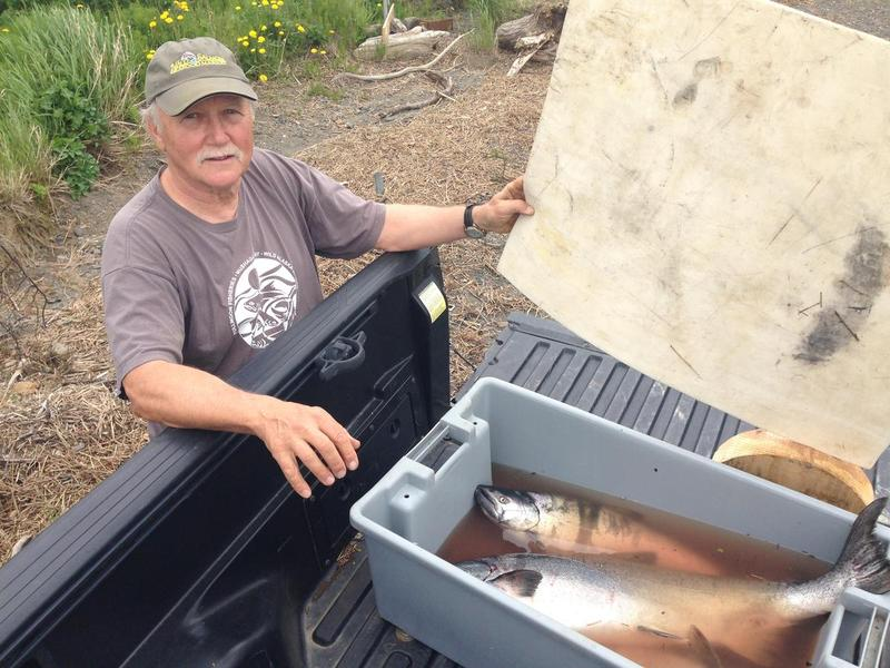Mike Davis showing off some subsistence catch at Kanakanak beach in Dillingham.