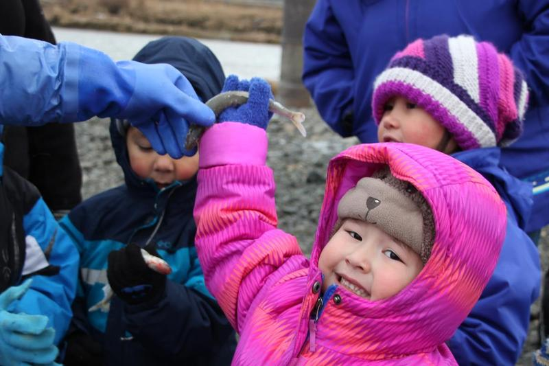 Young smelters at the Dillingham boat harbor, fall of 2016.