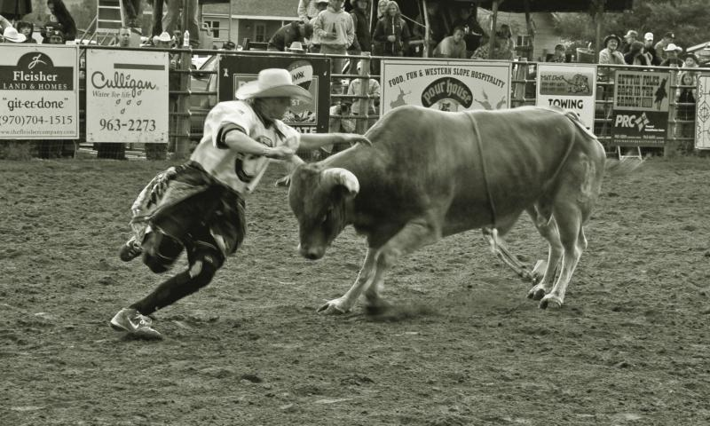 Bo Wertz Bull Fighter