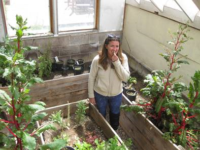 Ophir resident Jacey Depriest samples herbs grown in the town's greenhouse. Compost created by the town's new service will be used to supplement its greenhouse beds and town gardens.