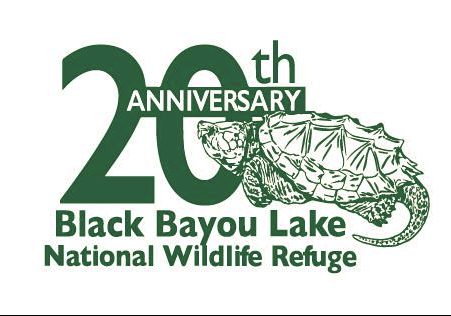 This 20th anniversary logo was designed by ULM student Amanda Womack