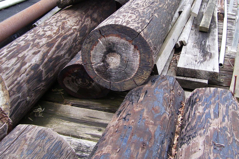 Creosote protects wood from rotting.