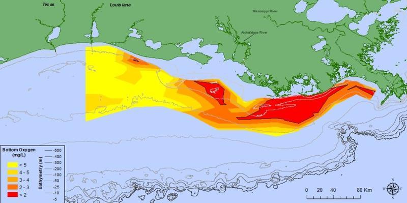 2018 Summer Gulf Dead Zone