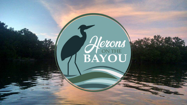Herons on the Bayou Art Project
