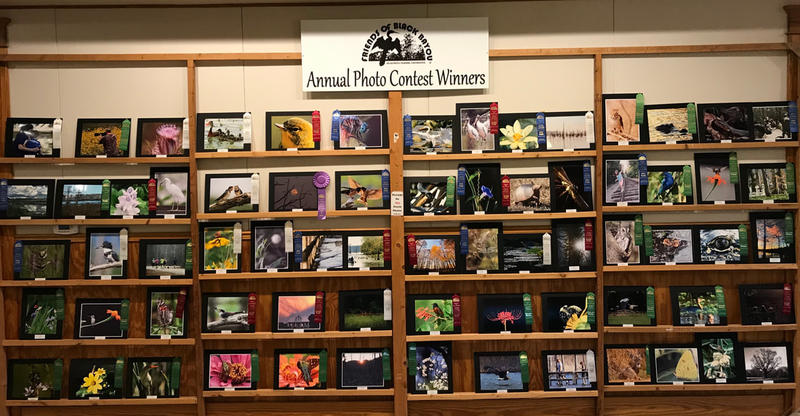 Annual Photo Contest Winners