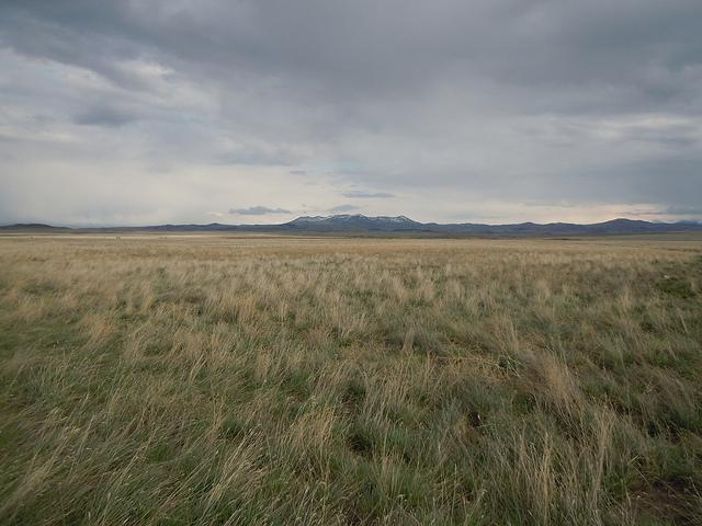 Between Havre and Box Elder along hwy 87 looking south at the Bear's Paw Mountains. [ROCKY BOY'S]