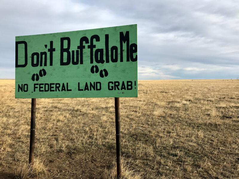 The Amerian Prairie Reserve manages nearly 400,000 acres of former ranchland in northeastern Montana. They're kicking out cattle and replacing them with wild bison.