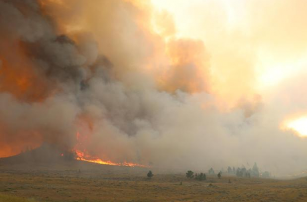 Lodgepole Complex Fire has grown to 226000 acres