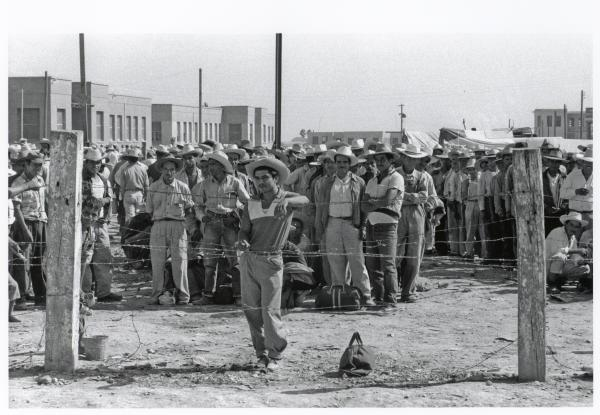 Braceros in cowboy hats wait in area penned by barbed wire at the Monterrey Processing Center. Nuevo León, Mexico, 1956.