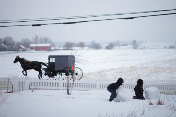 Pictured: Children play in the snow as a horse and buggy pass by.
