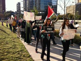 More than 300 people protested the Gaza Air Strikes in downtown Dallas this weekend.