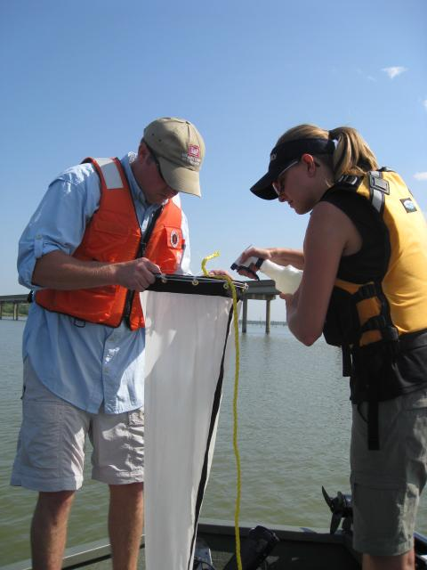 Biologists test for zebra mussels in Lake Lavon in August 2009