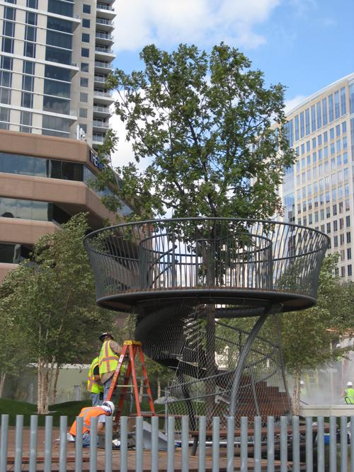 A spiral staircase takes children to a viewing platform near the top of a 26-foot bur oak.