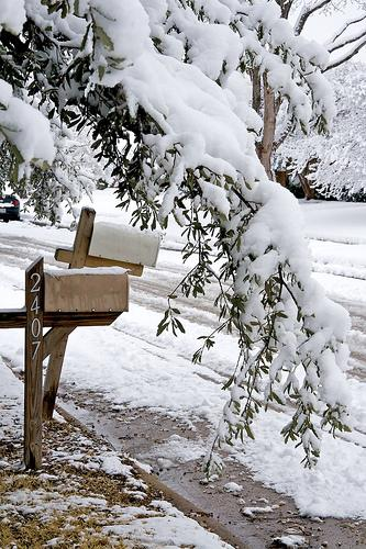 A heavy branch in Richardson hangs menacingly over an unsuspecting mailbox on Feb. 12, 2010.