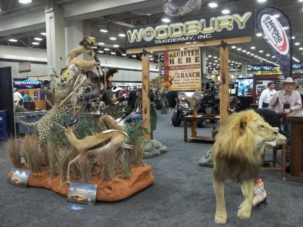 Dallas Safari Club conventiongoers filed past displays like this one.