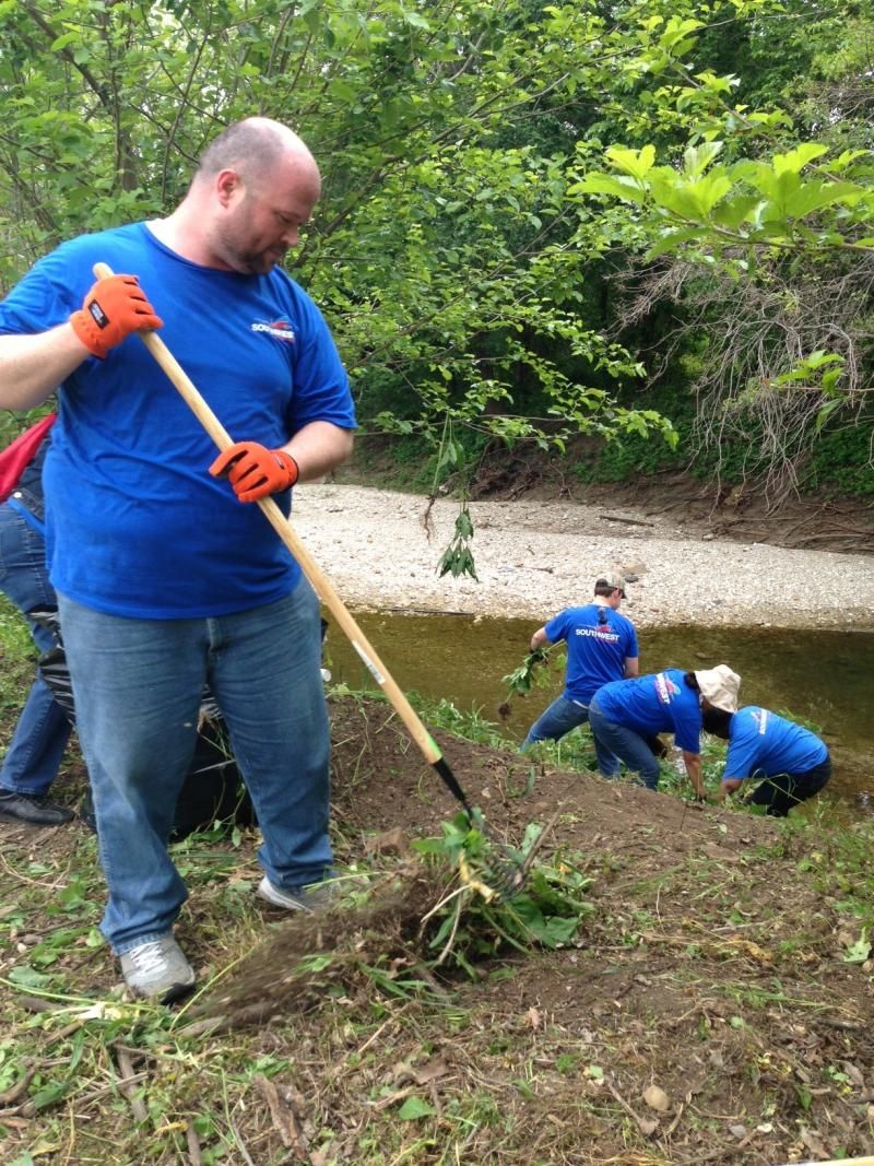 Brian Steen is one of 130 volunteers who helped remove weeds along the Trinity River, replacing them with native plants on Friday.