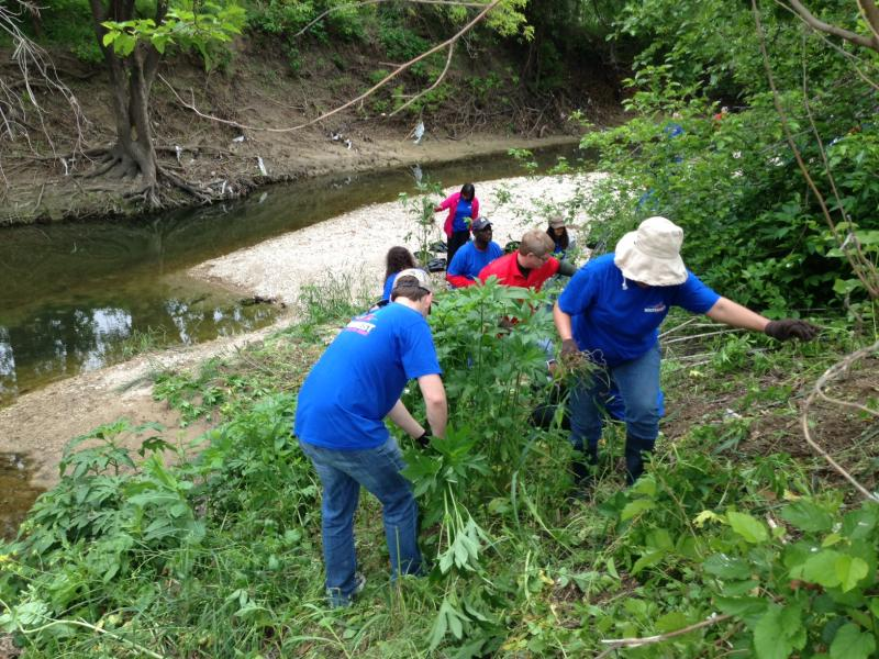 Clean-up efforts like this one will become more common along the Trinity River Corridor with the help of a $150,000 grant from Southwest Airlines.