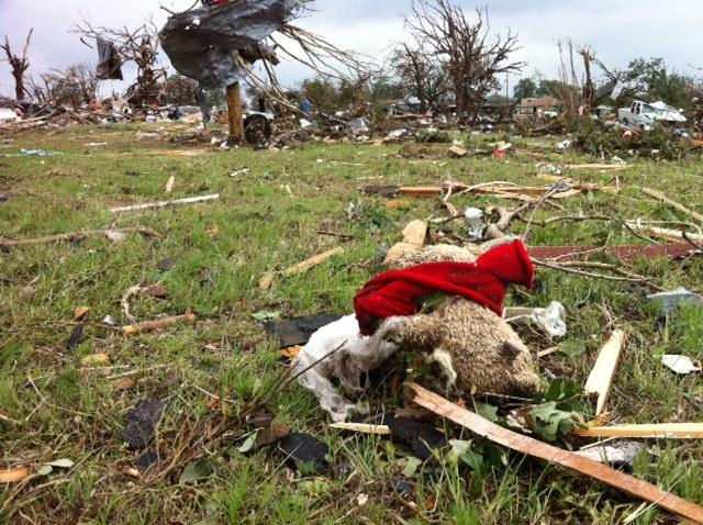 A teddy bear lies among the debris, near mangled cars and homes reduced to piles of sticks.