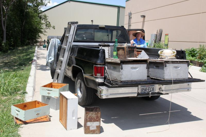 Beekeeper Susan Pollard stands watch over the queen bees on the passenger seat of the pickup. The queen's subjects are in the containers in the truck bed.