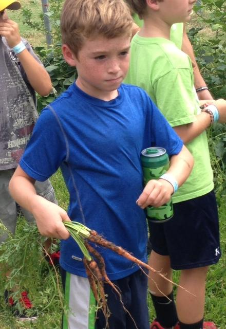 Brayden, 8, got a good carrot haul during his field trip.