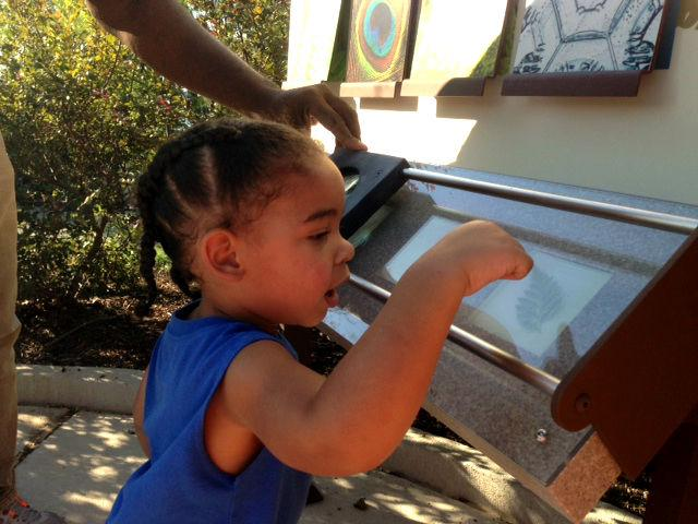 A not quite 2-year-old gets a kick out of nature through a magnifier.