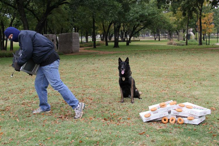 """The winning words from Arlington PD's holiday photo caption contest?  """"No jelly in the donuts? Looks like it's burglar for lunch again."""""""