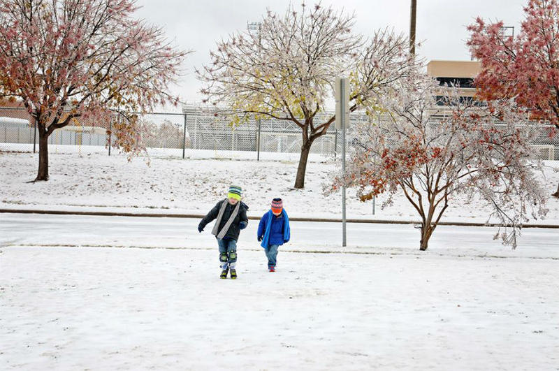 In Richardson, walking on an ice-covered grassy area didn't prove to be too challenging.
