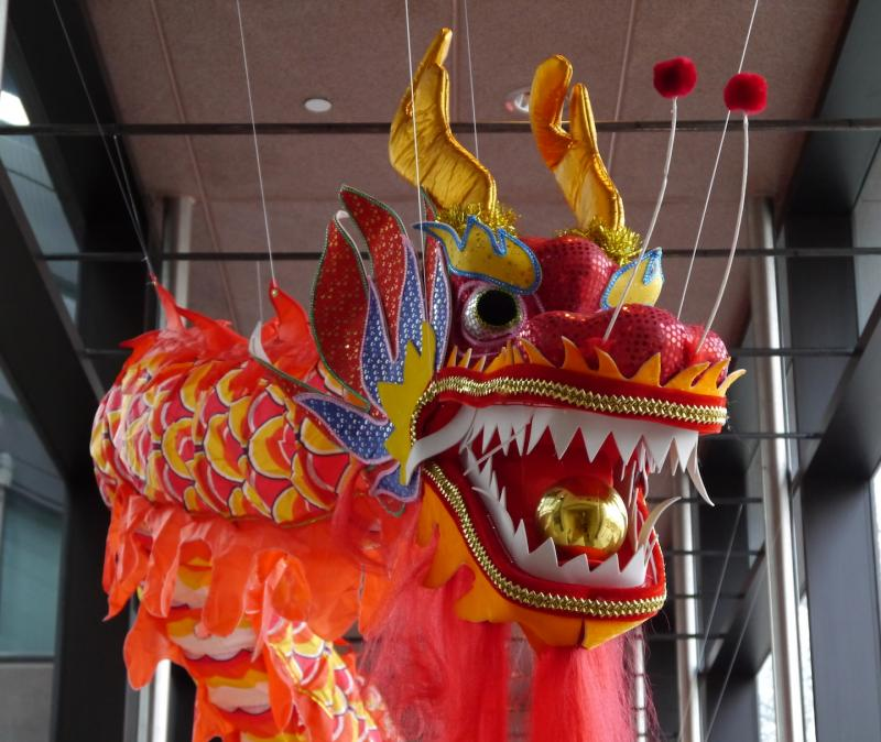 The Crow Collection of Asian Art celebrates Chinese New Year with free activities all day Saturday.