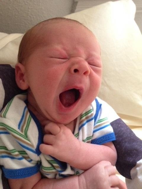 Newborns sleep between 16 and 20 hours a day in the early weeks. Too bad it isn't all at once.