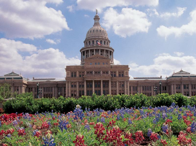 In this undated photo, maroon bluebonnets were mixed in with more traditional bluebonnets near the Texas Capitol.