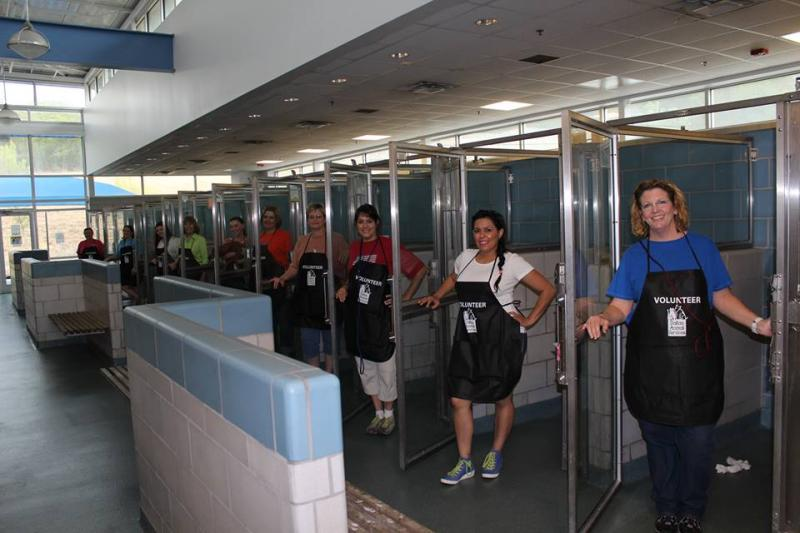 An unusual scene at the Dallas city animal shelter: Lots of empty kennels. More than 140 animals were adopted Saturday during Empty the Shelter Day.
