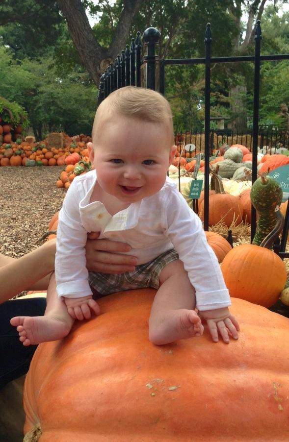 Six-month-old Peter is all smiles perched atop this pumpkin. (He may or may not be related to the reporter who filed this story.)