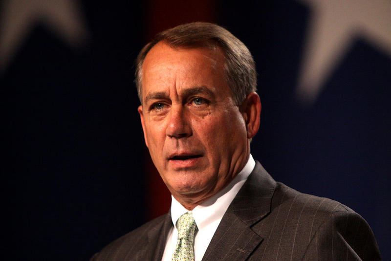 House Speaker John Boehner says a federal judge's ruling temporarily blocking President Obama's executive action on immigration shows that he acted beyond his authority.