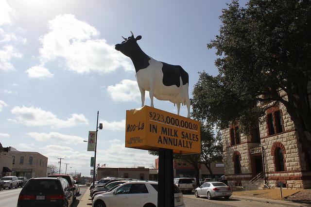 "Stephenville's known as the ""cowboy capital of the world."""