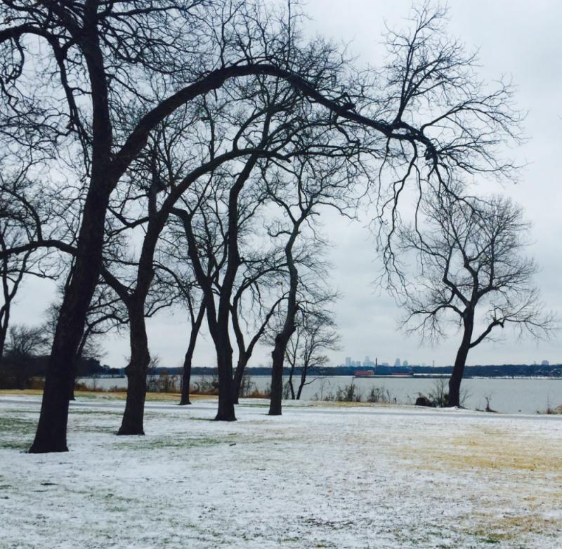 Sleet covers the ground at White Rock Lake in Dallas Monday.