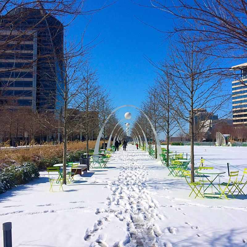 In Dallas, Klyde Warren Park was snowy and peaceful Thursday morning.
