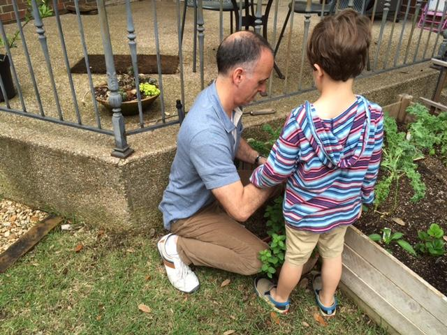 John Rodakis and his son plant seeds in the backyard of their Dallas home.