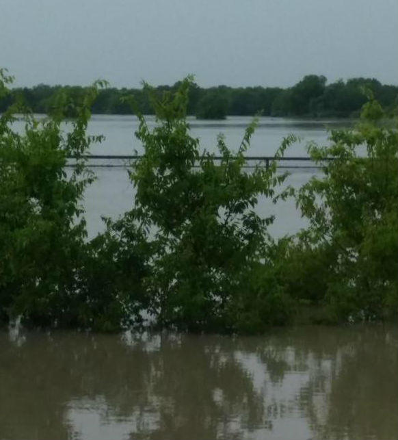 Parts of State Highway 66 between Royse City and Caddo Mills were flooded Sunday.