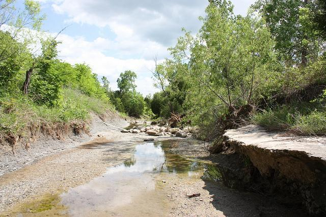 This eroded channel on the North Sulphur River near Ladonia would become part of the Lake Ralph Hall reservoir.