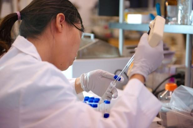 A team of scientists isolated Amber Vinson's antibodies from her blood. They used those antibodies to create a vaccine, which is now being tested.