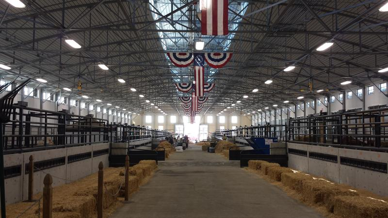 There are four cattle barns, with about 2,500 to 3,000 livestock on the grounds at one time.