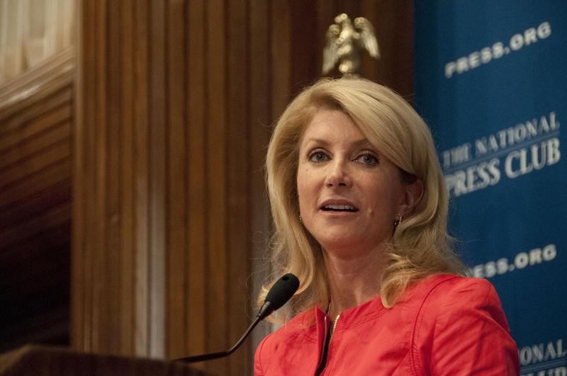Wendy Davis speaks to the National Press Club, Aug. 5, 2013 in Washington, DC.