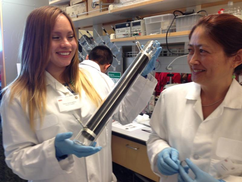 Patricia Martinez, a Ph.D. student at UT Dallas, and UT Dallas scientist Zharkynay Christian show off a nano carbon tube.