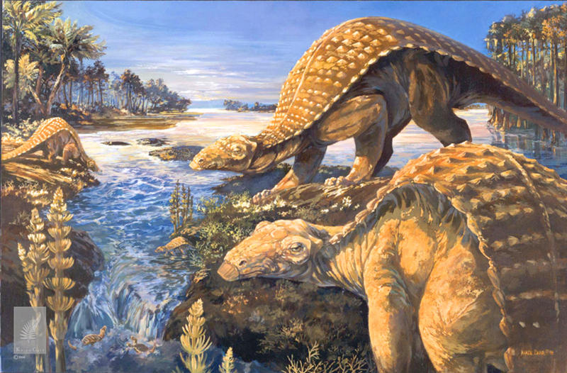 Pawpawsaurus lived 100 million years ago and was first identified from a skull found in Fort Worth.