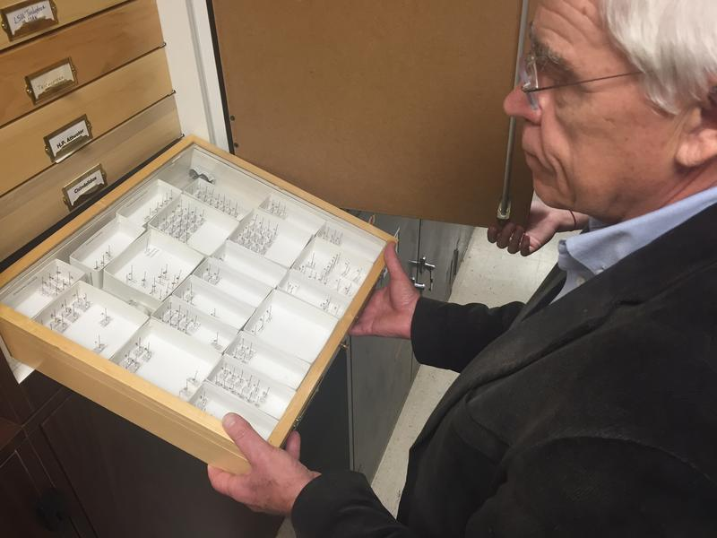 UNT Biology Professor James Kennedy shows a display case with the more than 50 types of mosquitoes that live in North Texas.
